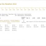 Vienna City Marathon-2